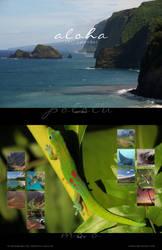 2017-Aloha-Calendar by Crooty