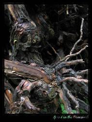 Spirit in the Vinestock by Crooty