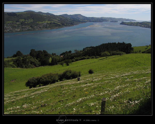 Otago Peninsula II by Crooty