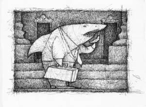 11 Shark 300