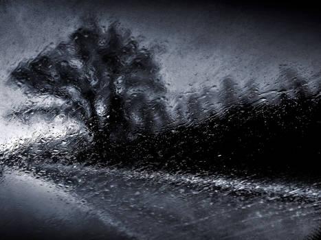 Cold November Rain