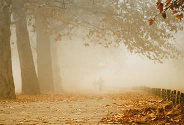 November walk by StefanyKK