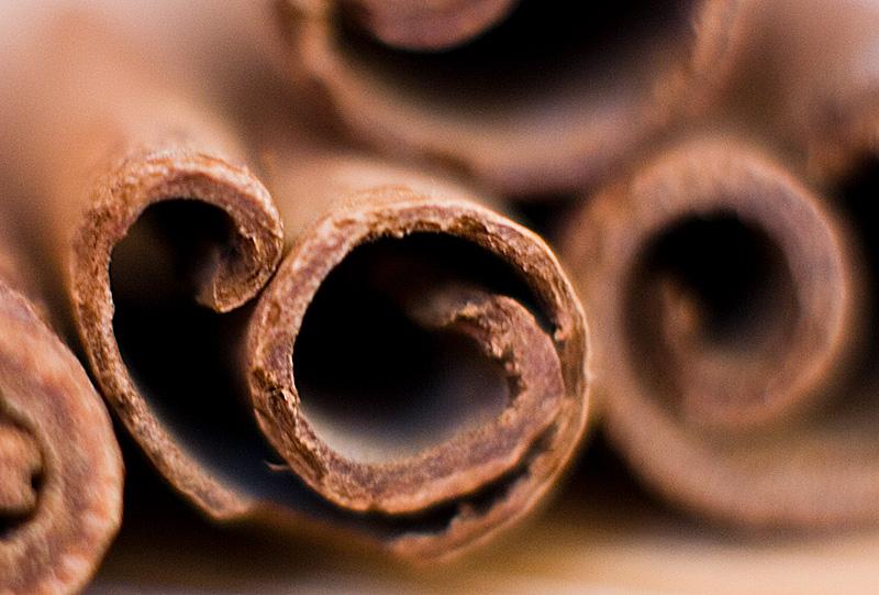 cinnamon by StefanyKK