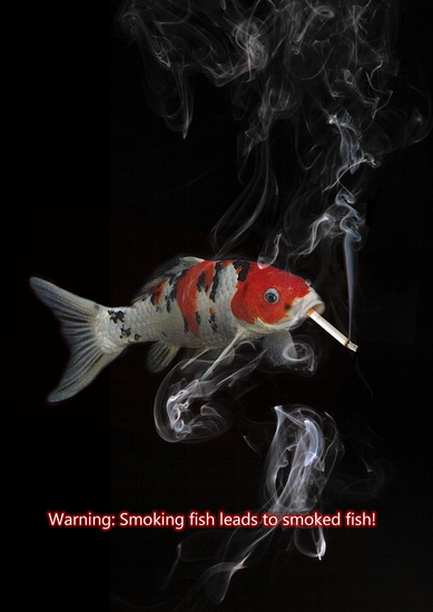 Smoking fish by jacqchristiaan on deviantart for Smoking fish in a smoker