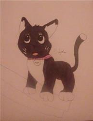 My Kitty Skye ^..^ by Sparkles247