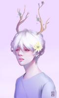 ~My Deer Boy~