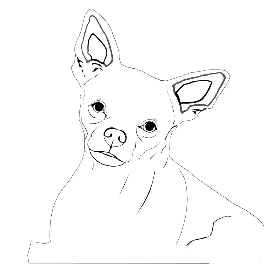 Realistic chihuahua coloring pages coloring pages for Chihuahua coloring pages
