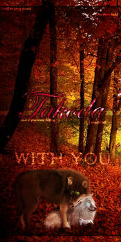 Fall With You