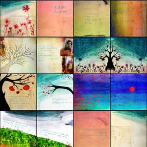 Autumn Apples - Book Design