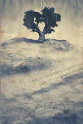 Trees - p2 of 3