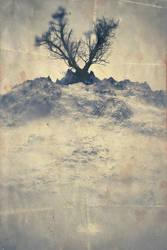 DeadTrees - p2 of 3