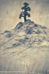 DeadTrees - p3 of 3