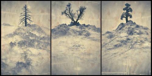 Treesptych - 02