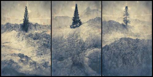 Treesptych - 04
