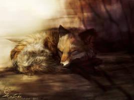 Morning Nap by CobraVenom