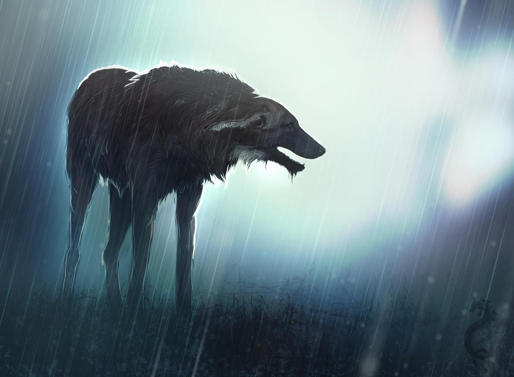 Life After The Man - Mutant Wolf Rp -[Open] Solitude_by_cobravenom-d49aojl