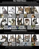 The 'Wolf' Meme by CobraVenom