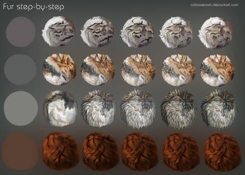 Fur step-by-step