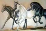 Horses by detasar