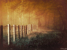 Path Of Illusions by Weissglut