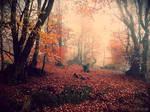 Fairy Wood I