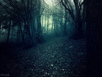 Mist Rituals by Weissglut