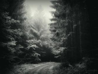 Somewhere In The Dark by Weissglut