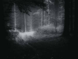 Shedding the Deadwood by Weissglut