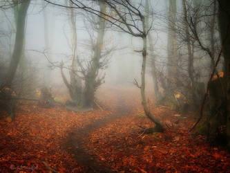 Last Autumn by Weissglut