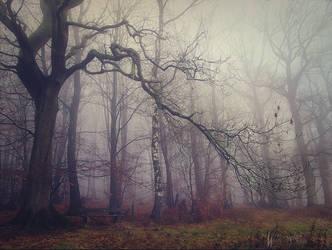 Dec. 31-2014 by Weissglut