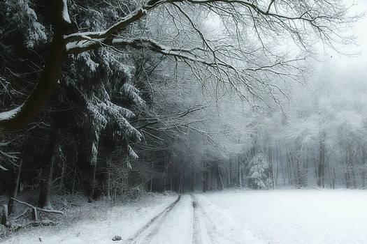 A Little Bit Of Winter