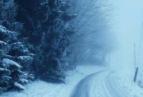 Snowy Days*