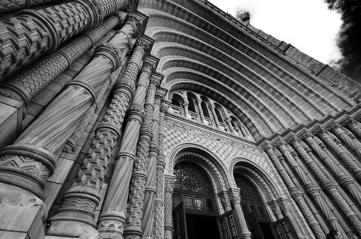 Arches in Mono by roodpa