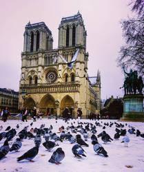 Notre Dame de Paris  by Monomakh