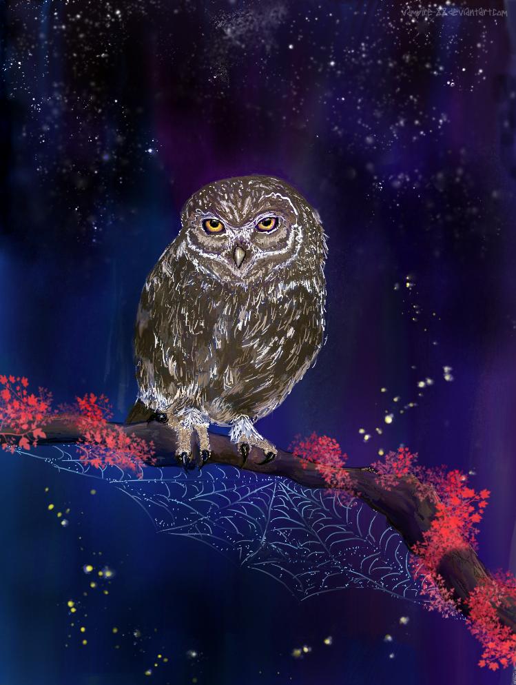 Owly starlight by vampire-88