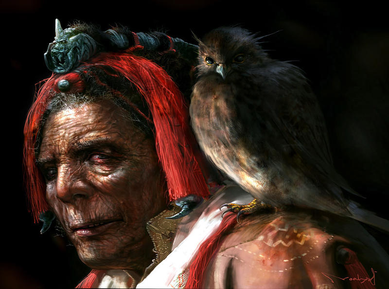 old man and falcon by noah-kh