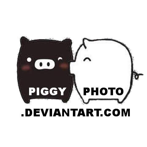 piggyphoto's Profile Picture