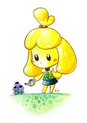 Isabelle by CRAZ1