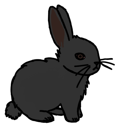 Black bunny by Holly8