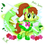 [4/11] Sailor Jupiter by MeganLovesAngryBirds