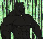 2010 Intro - Large Panther