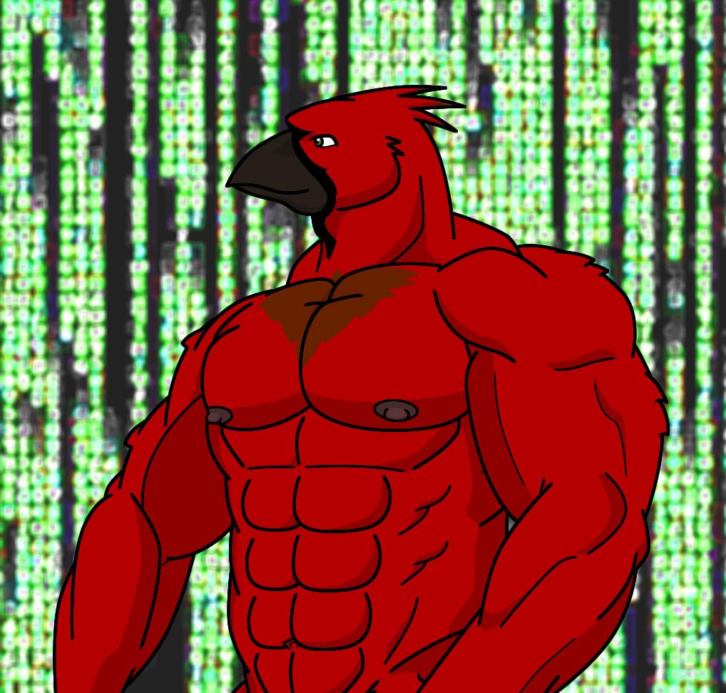 Red Jaybird by WolfoxOkamichan