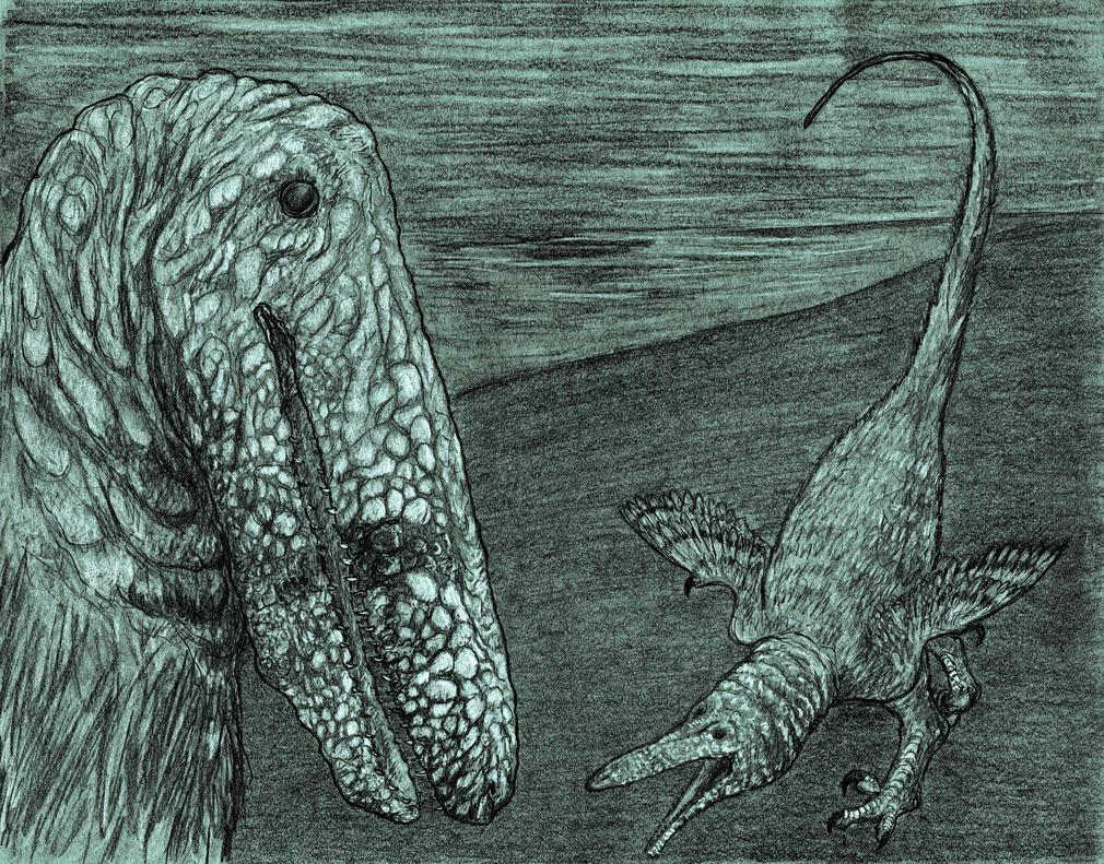 Austroraptor Drkr #4 copy by NashD1
