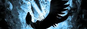 Boombird by Zaeinn