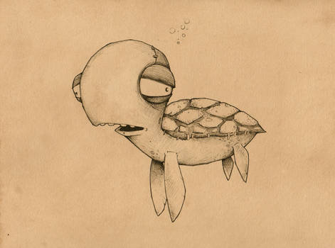 Grover : the sea turtle