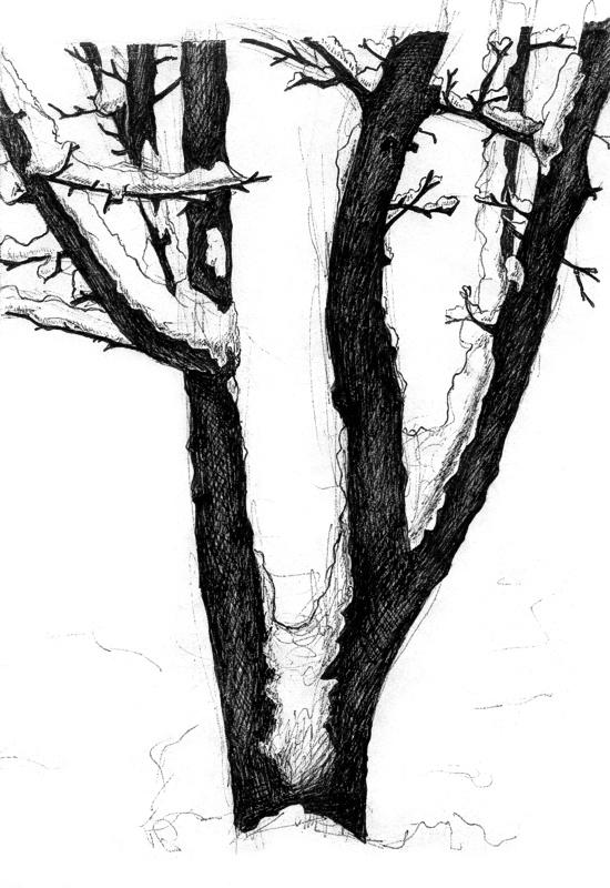 A Snow-Covered Tree by RezoKaishauri on DeviantArt