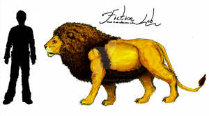 Panthera leo leo Scale