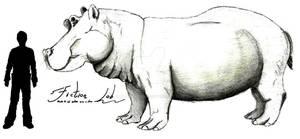 Hippopotamus gorgops Scale