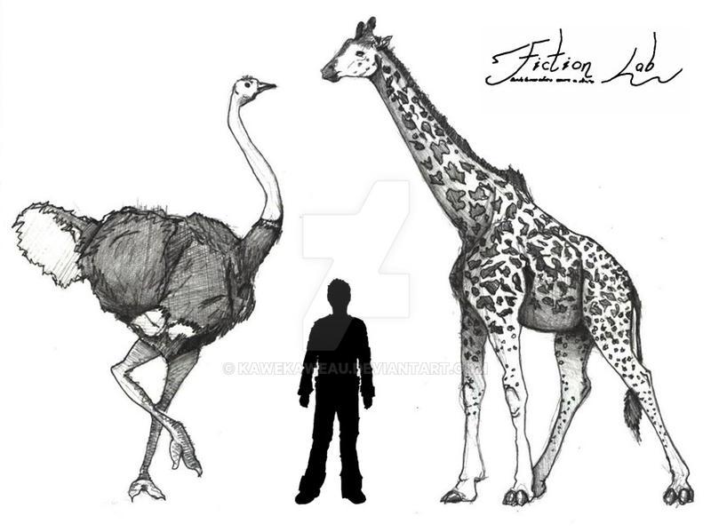 Giant Ostrich by Kawekaweau