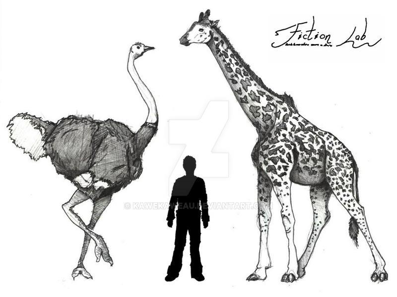 Giant Ostrich